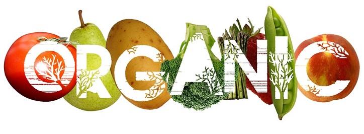 organic food, organic shop, healthy food, organic food india, online organic food, buy organic food, organic deals, organic shop, best organi